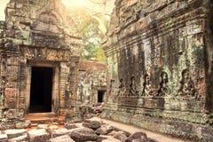 Καταστροφές του αρχαίου ναού που χάνονται στη ζούγκλα Στοκ Φωτογραφία