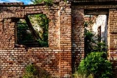 Καταστροφές του παλαιού εγκαταλειμμένου τούβλινου σπιτιού με τα παράθυρα και την πόρτα και των πράσινων άγριων εγκαταστάσεων μέσα Στοκ Φωτογραφίες