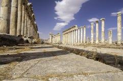 Καταστροφές Apamea, Συρία Στοκ φωτογραφίες με δικαίωμα ελεύθερης χρήσης