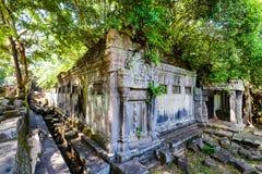 Καταστροφές Beng Mealea Στοκ Φωτογραφίες
