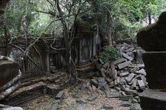 Καταστροφές Beng Mealea, Angkor, Καμπότζη Στοκ Εικόνα