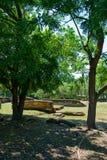 καταστροφές biejo leon στοκ φωτογραφίες με δικαίωμα ελεύθερης χρήσης