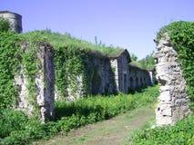 Καταστροφές kamianets-Podilskyi του Castle Στοκ φωτογραφίες με δικαίωμα ελεύθερης χρήσης