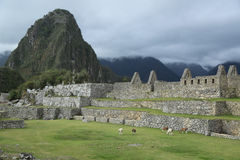 Καταστροφές Picchu Machu στο Περού Περιοχή παγκόσμιων κληρονομιών της ΟΥΝΕΣΚΟ από το 1983 Στοκ εικόνες με δικαίωμα ελεύθερης χρήσης