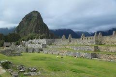 Καταστροφές Picchu Machu στο Περού Στοκ εικόνες με δικαίωμα ελεύθερης χρήσης