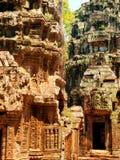Καταστροφές TA prohm, Angkor Wat, Καμπότζη Στοκ Εικόνα