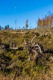 Καταστροφή αέρα Στοκ φωτογραφίες με δικαίωμα ελεύθερης χρήσης