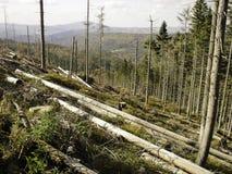 καταστροφή οικολογική Στοκ φωτογραφία με δικαίωμα ελεύθερης χρήσης