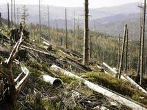 καταστροφή οικολογική Στοκ Εικόνες