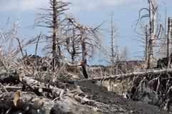 καταστροφή φυσική Στοκ εικόνα με δικαίωμα ελεύθερης χρήσης