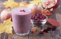 Καταφερτζής με cowberry, το μήλο και το ρόδι Στοκ φωτογραφία με δικαίωμα ελεύθερης χρήσης