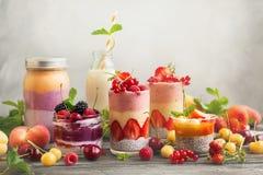 Καταφερτζής μούρων φρούτων Στοκ Εικόνα