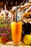 Καταφερτζής των μήλων και των αχλαδιών Στοκ Εικόνες