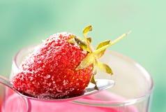 Καταφερτζής φραουλών Στοκ Φωτογραφίες