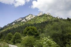 Καταφύγιο βουνών, τρεις κορώνες στον ποταμό Donay στοκ εικόνες
