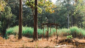 Καταφύγιο μέσα στο δάσος στοκ εικόνες