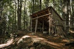 Καταφύγιο στα δάση Στοκ Φωτογραφία