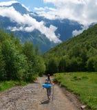 Κατεβαίνει από το βουνό στη δασική πορεία Στοκ εικόνα με δικαίωμα ελεύθερης χρήσης