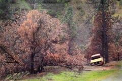 Κατεστραμμένη περιοχή στοκ φωτογραφία με δικαίωμα ελεύθερης χρήσης