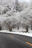 Κατηγορίες τοπίου: Χιόνι εθνικών οδών Yu Shaanxi Qinling Feng Στοκ εικόνα με δικαίωμα ελεύθερης χρήσης