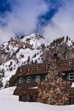 κατοικήστε το σκι Στοκ Φωτογραφίες