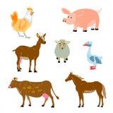 κατοικίδια ζώα ζώων ελεύθερη απεικόνιση δικαιώματος