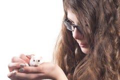 κατοικίδιο ζώο χάμστερ κοριτσιών στοκ φωτογραφία
