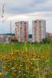 Κατοικημένα σπίτια στα πλαίσια των χρωμάτων λιβαδιών του τομέα Στοκ Εικόνες