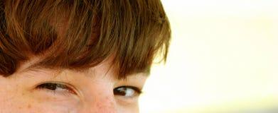 κατσίκια ματιών Στοκ εικόνα με δικαίωμα ελεύθερης χρήσης