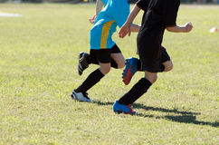 κατσίκια που παίζουν το ποδόσφαιρο Στοκ Φωτογραφίες