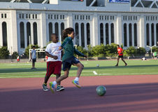 κατσίκια που παίζουν το ποδόσφαιρο Στοκ φωτογραφίες με δικαίωμα ελεύθερης χρήσης