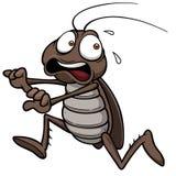 Κατσαρίδα κινούμενων σχεδίων διανυσματική απεικόνιση