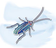 Κατσαρίδες, διακοσμητική ζωγραφική Στοκ Εικόνα