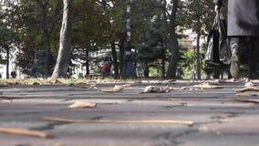 Κατώτατη άποψη πάρκων απόθεμα βίντεο