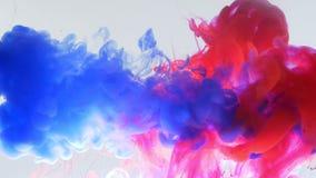 Κατώτατο σημείο κινηματογραφήσεων σε πρώτο πλάνο επάνω στο βλαστό κινήσεων του μπλε και ρόδινου μελανιού watercolor που καταβρέχε φιλμ μικρού μήκους