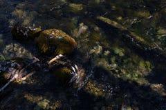 Κατώτατο υπόβαθρο ποταμών στοκ εικόνες με δικαίωμα ελεύθερης χρήσης