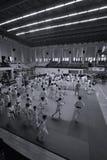 Κατώτερη πάλη Jitsu Jiu στο ρουμανικό πρωτάθλημα, νεώτεροι, το Μάιο του 2018 στοκ φωτογραφίες με δικαίωμα ελεύθερης χρήσης