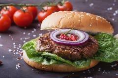 Κατ' οίκον γίνοντα burger μαγείρεμα Στοκ φωτογραφία με δικαίωμα ελεύθερης χρήσης