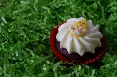 Κατ' οίκον γίνοντα muffin Πάσχας που διακοσμείται με το αυγό Πάσχας Στοκ φωτογραφίες με δικαίωμα ελεύθερης χρήσης