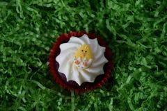 Κατ' οίκον γίνοντα muffin Πάσχας που διακοσμείται με το αυγό Πάσχας Στοκ εικόνα με δικαίωμα ελεύθερης χρήσης