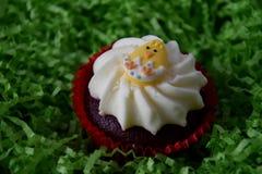 Κατ' οίκον γίνοντα muffin Πάσχας που διακοσμείται με το αυγό Πάσχας Στοκ Φωτογραφία
