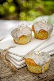 Κατ' οίκον γίνοντα muffins Στοκ φωτογραφίες με δικαίωμα ελεύθερης χρήσης