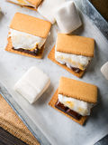 Κατ' οίκον γίνοντα smore marshmallow μεταχειρίζεται για τα παιδιά Στοκ εικόνα με δικαίωμα ελεύθερης χρήσης