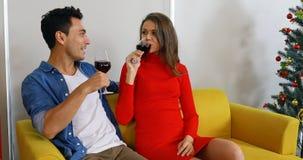 Καυκάσιο ζεύγος που πίνει το κόκκινο κρασί από κοινού απόθεμα βίντεο