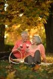 Καυκάσιο ηλικιωμένο ζεύγος Στοκ Εικόνες