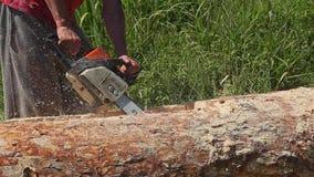 Καυκάσιο πριονίζοντας ξύλο ατόμων με το αλυσιδοπρίονο στην πράσινη χλόη απόθεμα βίντεο