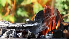 Καυσόξυλο και άνθρακες κινηματογραφήσεων σε πρώτο πλάνο που καίνε στην εστία απόθεμα βίντεο