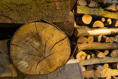 Καυσόξυλο μπριζολών που συσσωρεύεται τακτοποιημένα Στοκ Φωτογραφίες
