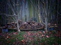 καυσόξυλο Στοκ Φωτογραφίες