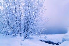 Καυτά ελατήρια Malkinsky Kamchatka στοκ εικόνες